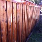 Board on Board Cedar Privacy Fence