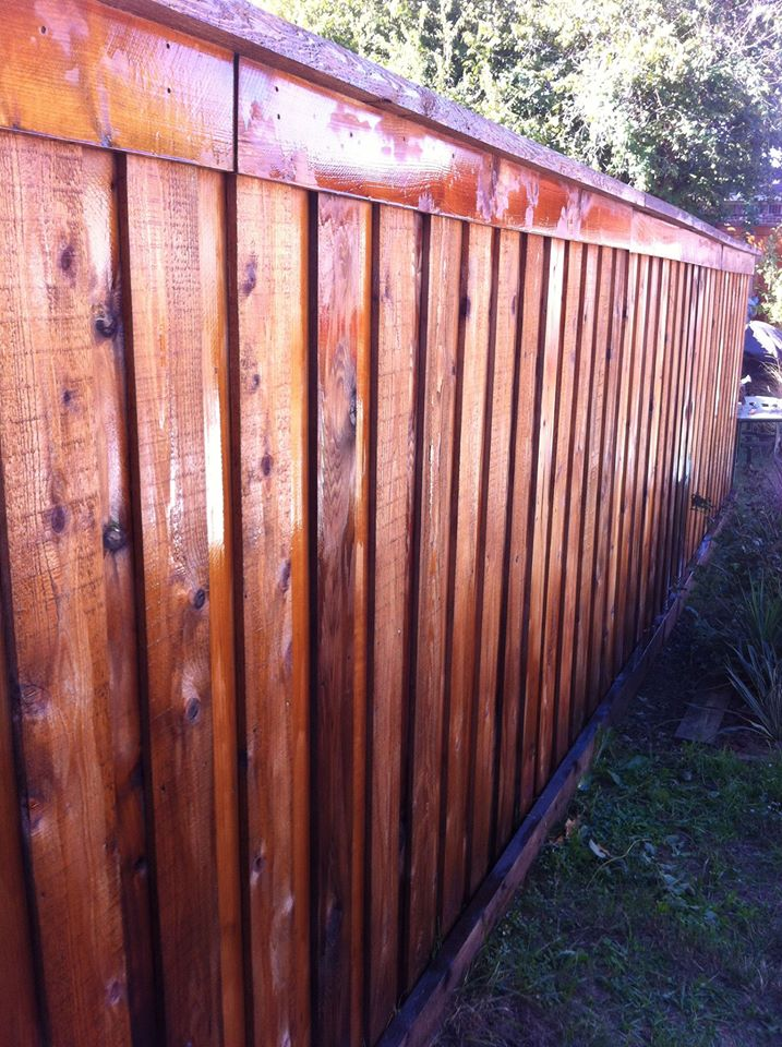 Board on Board Cedar Privacy Fence